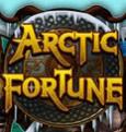 В игровом зале Вулкан автомат Arctic Fortune
